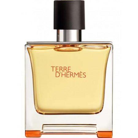 terre-dhermes-by-hermes-pure-parfum-75ml-for-men-bottle-1