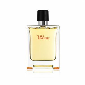 Terre-D'hermes-100ml-EDT-for-Men-bottle